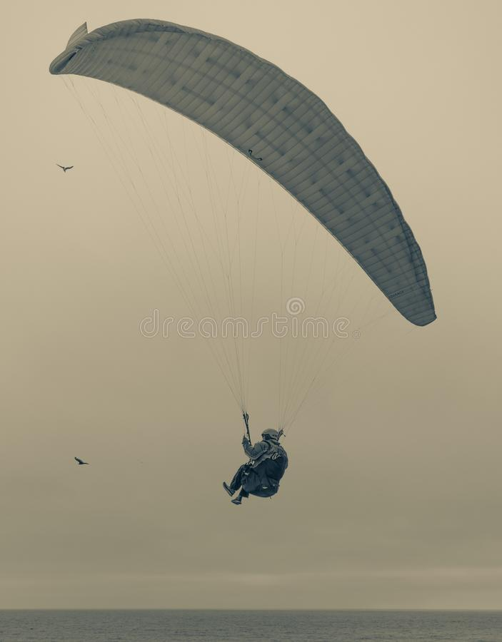 Paraglider flying above beach goers stock image
