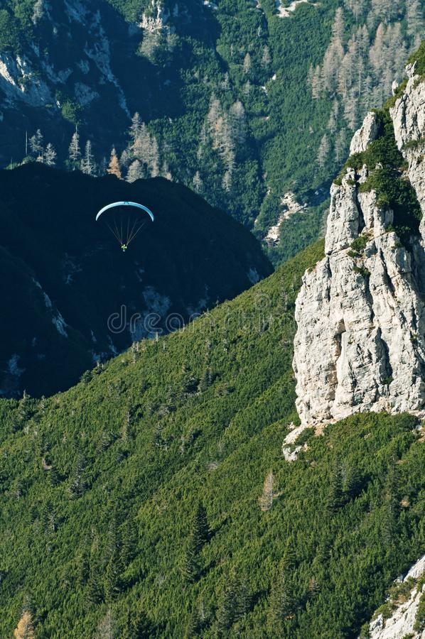 Paraglider flying over pine tree mountain slope royalty free stock images