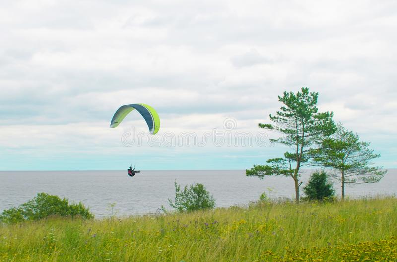 Paraglider landing on green grass. extreme sport in the sky over the open sea on a background of blue sky and white clouds stock photography