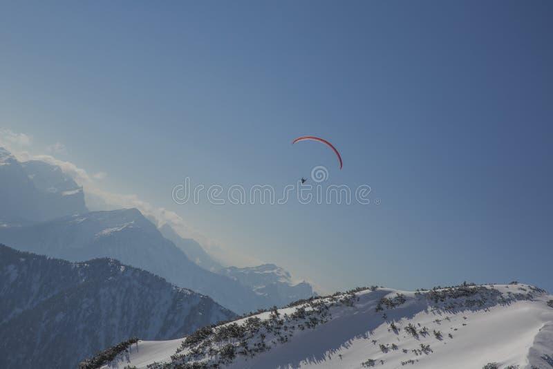 Paraglider lata nad Austriackim Apls na słonecznym dniu zdjęcia royalty free