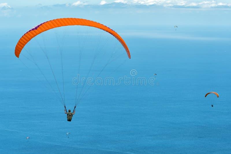 Paragliders coloridos acima do oceano azul foto de stock royalty free