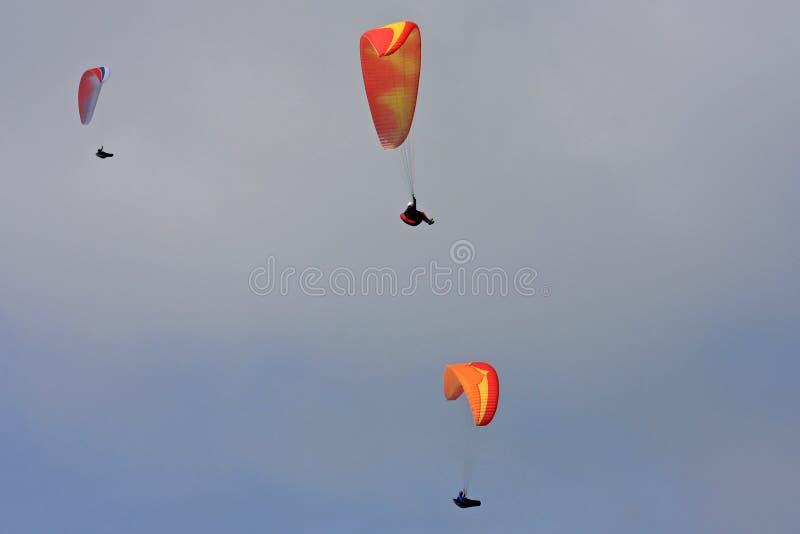 Download Paragliders imagem de stock. Imagem de recreação, esporte - 29842279
