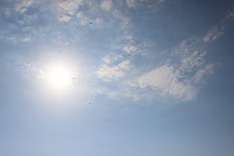 Paragliders no céu 1 imagens de stock royalty free