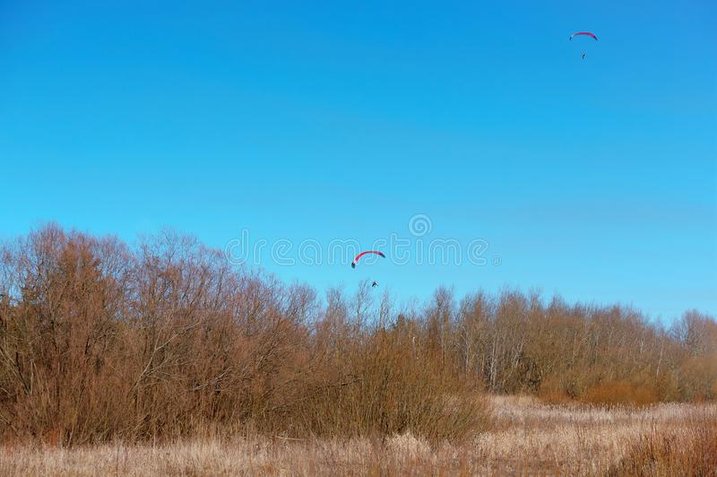 Paragliders no céu sobre a floresta fotografia de stock