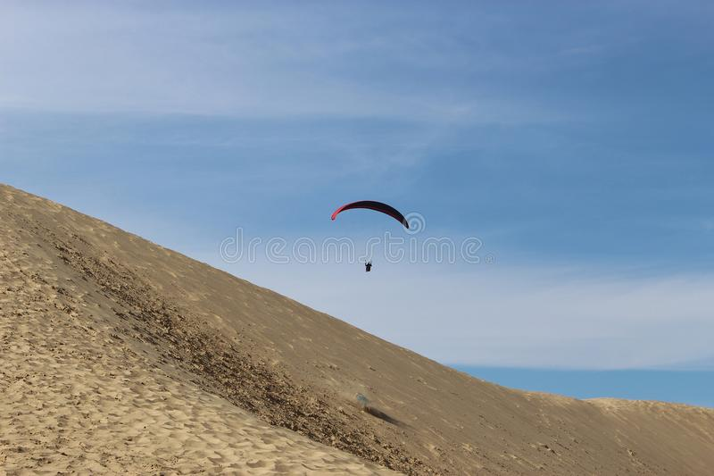 Paragliding in Denmark. A Para-Glider flies over huge dunes in Denmark, Europe royalty free stock photography