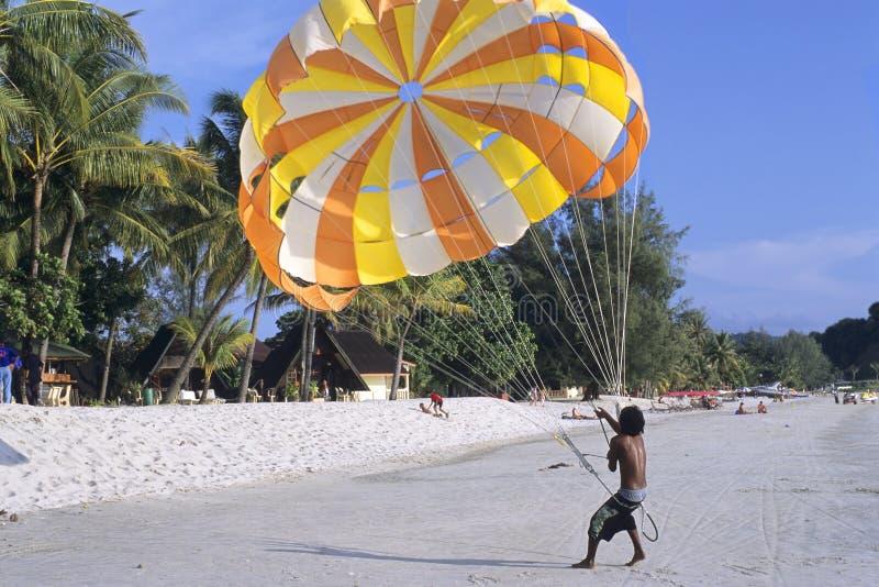 Paragliding na praia foto de stock royalty free
