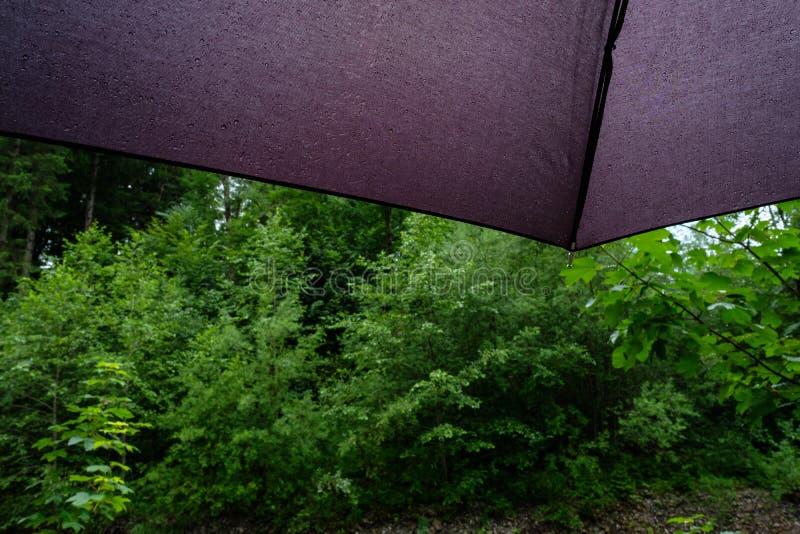 Paraguas del detalle con descensos del agua fotografía de archivo