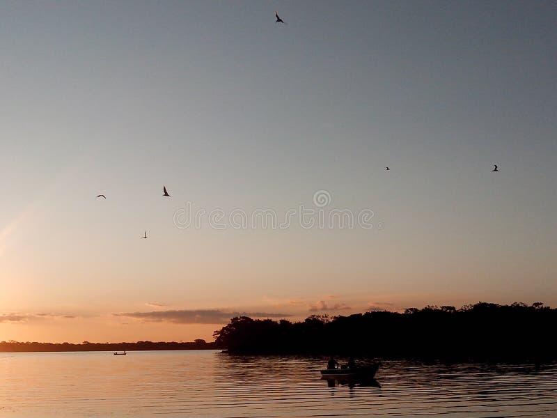 Paraná river stock image