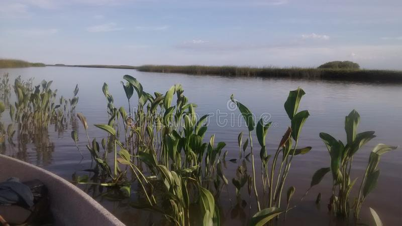 Parana River royaltyfria bilder