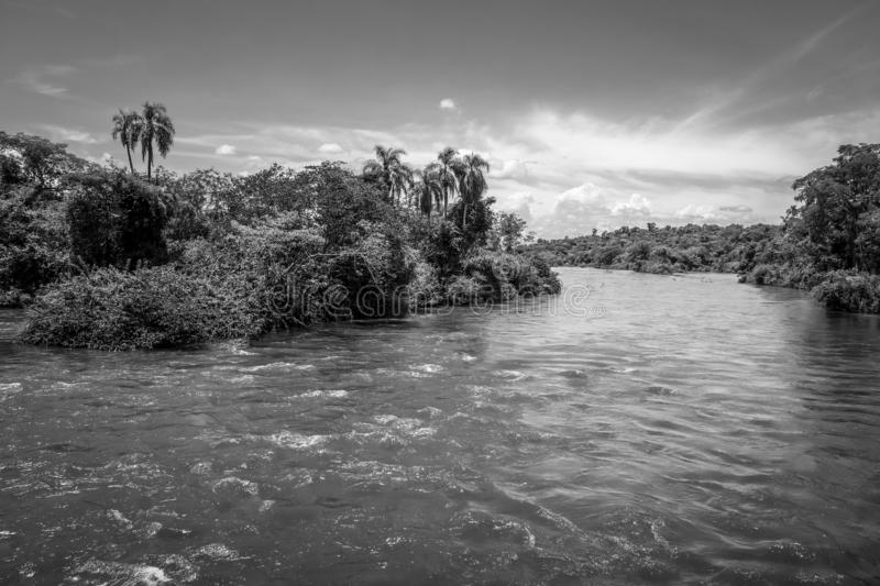 Parana river at iguazu falls. National park. tropical rapids and rainforest landscape. Black and white picture royalty free stock image