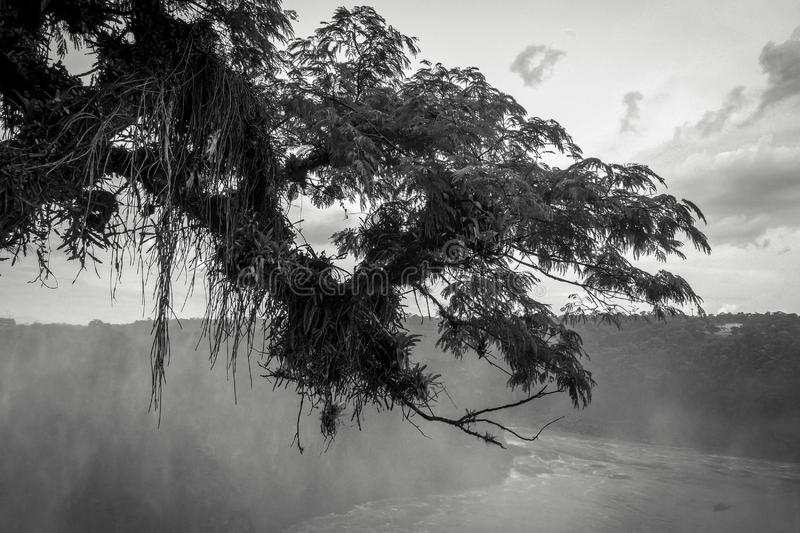 Parana river at iguazu falls. National park. tropical rapids and rainforest landscape. Black and white picture royalty free stock photo