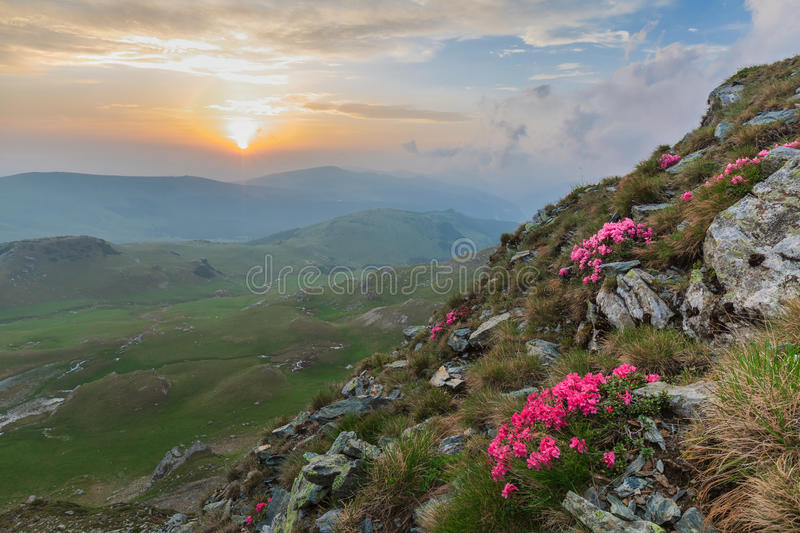 The Parang Mountains, Romania stock images