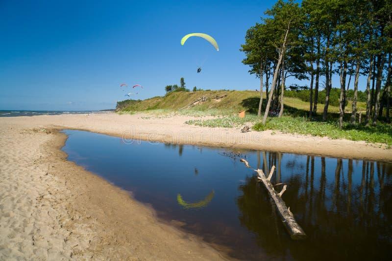 Parapentisme dans la plage photographie stock libre de droits
