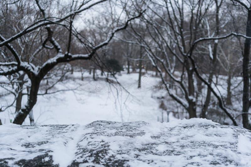 Parapet śniegu most w nowym York, centrala park fotografia stock