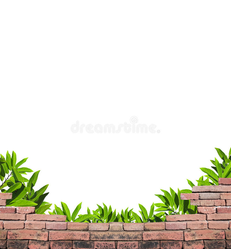 Download Parapet and leafs stock photo. Image of decorate, agriculture - 17768874