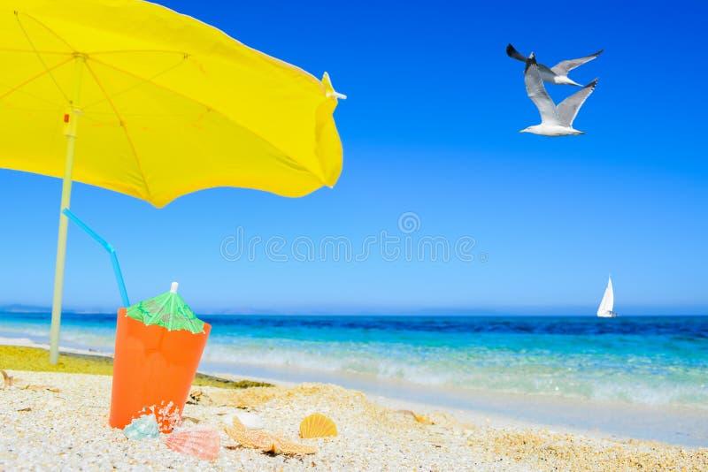 Download Paraplu En Cocktail Onder Vliegende Meeuw Stock Afbeelding - Afbeelding bestaande uit vogel, hemel: 54086429