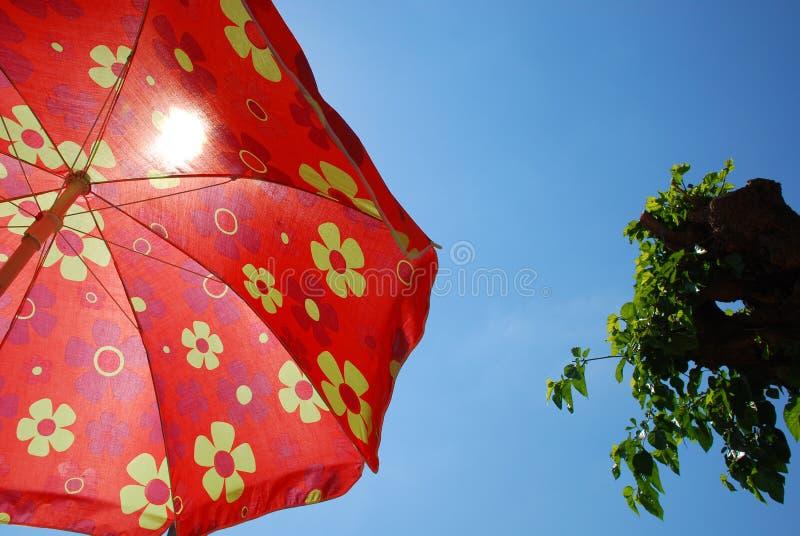 Parapluie de plage contre le ciel bleu avec l'arbre photo stock