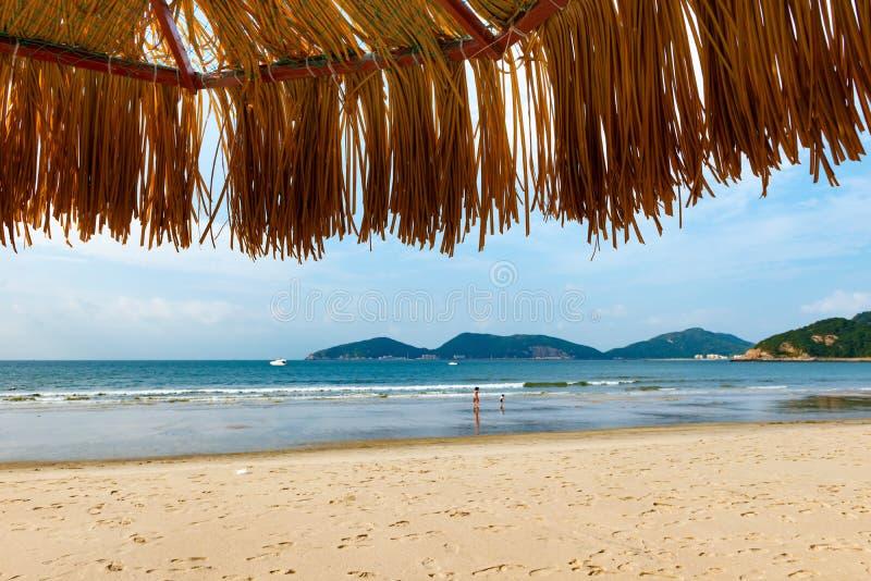 Parapluie sur une plage image libre de droits