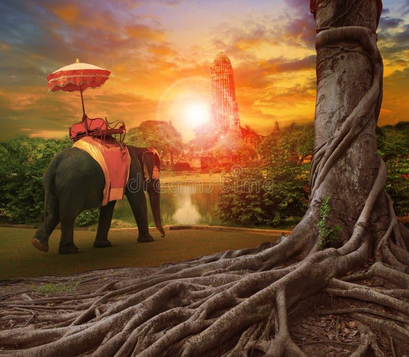 Parapluie thaïlandais d'éléphant et de royaume dans la pagoda antique de palais, interdiction photo libre de droits