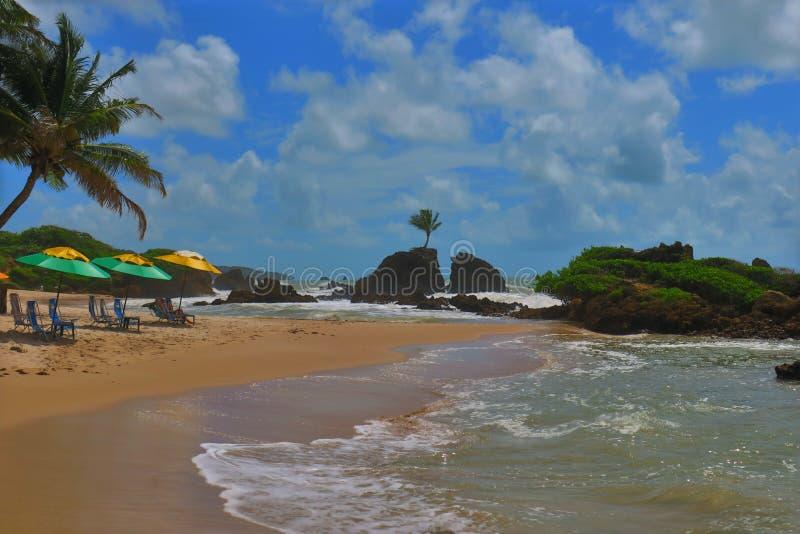 Parapluie vert et jaune dans une plage sablonneuse dans Paraiba Brésil image libre de droits