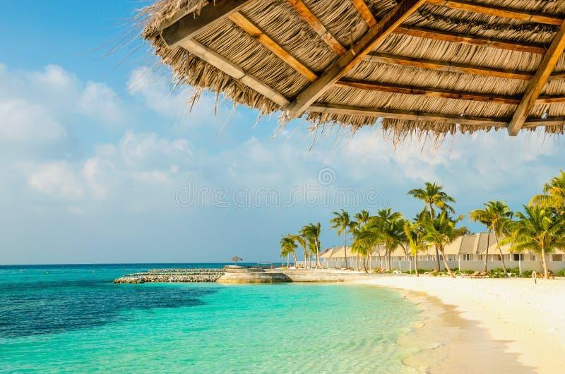 Parapluies de palmier et plage sablonneuse maldivienne nexotic, Maldives image stock