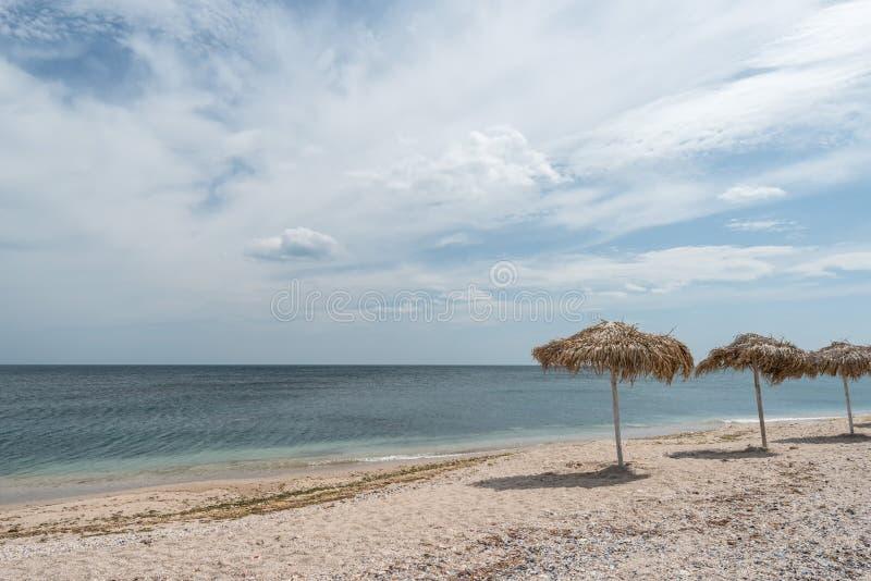 Parapluies de Reed sur la plage images stock