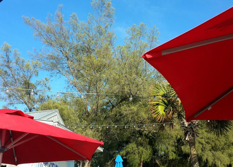 Parapluies extérieurs de patio de restaurant de Bistros en rouge recherchant avec les arbres verts et le ciel bleu aucun nuages à photographie stock libre de droits