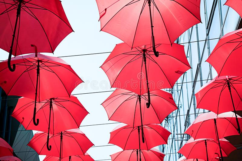 Parapluies rouges photo stock