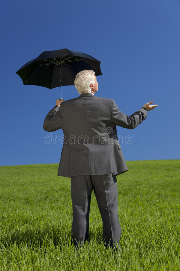 paraply för affärsmanfältgreen royaltyfri fotografi