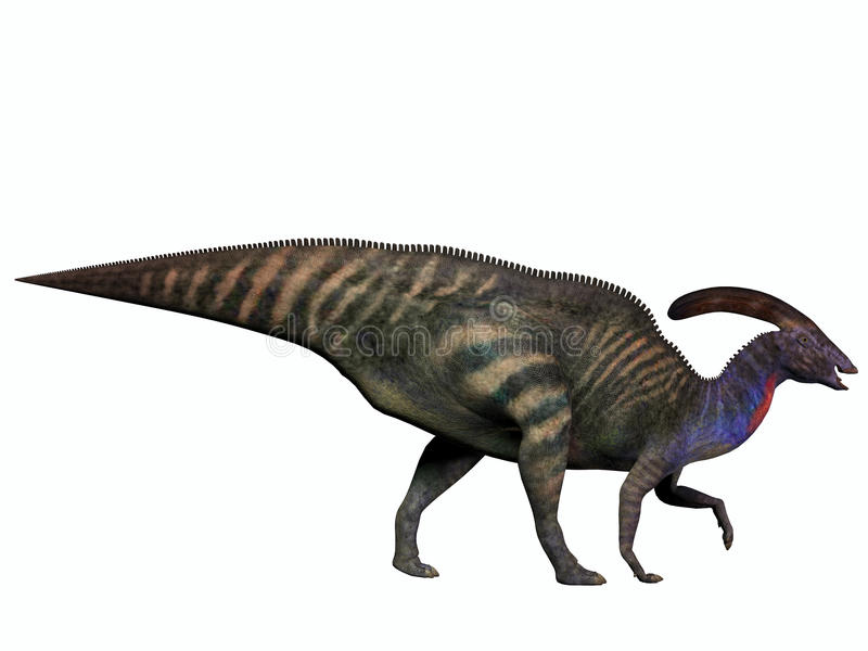 Parasaurolophus on White stock illustration. Illustration ...