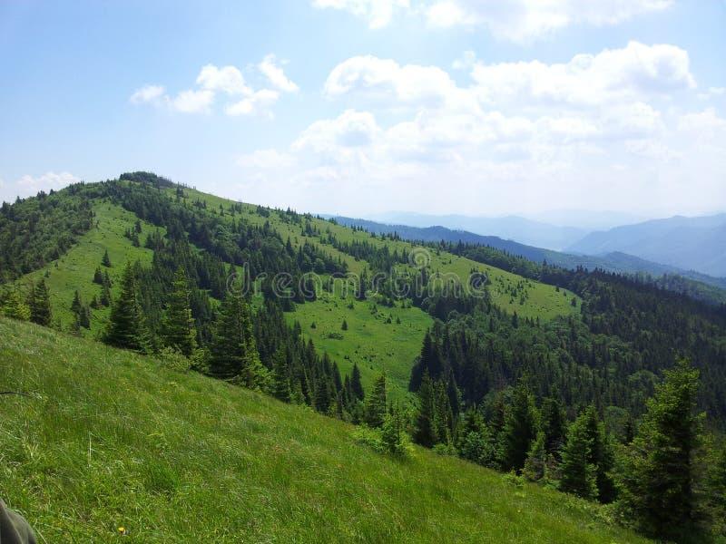 Parashka góra, góry Carpathians zdjęcie stock