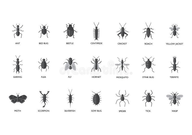 Parasites - illustration d'insectes illustration libre de droits