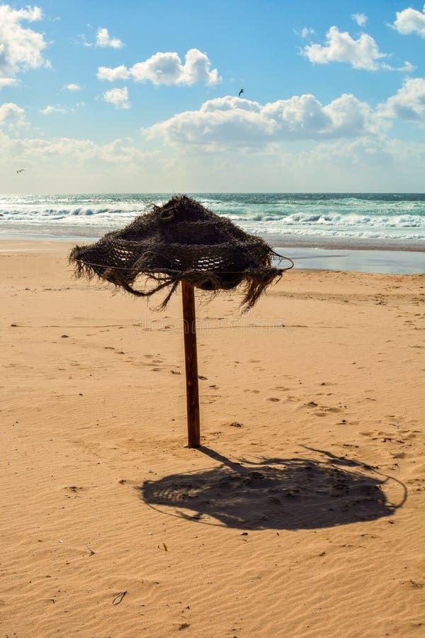 parasol royaltyfri foto