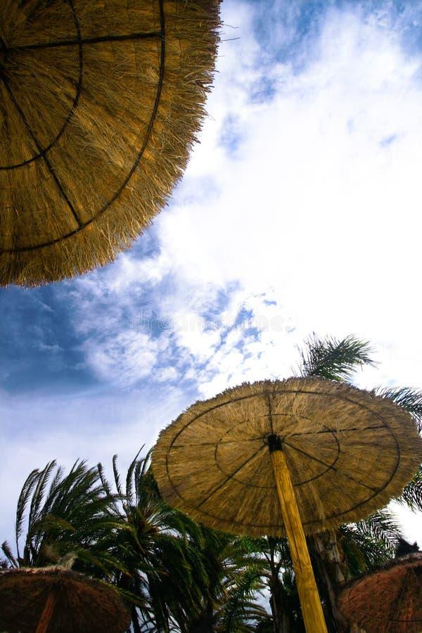 parasol del sol imagen de archivo libre de regalías