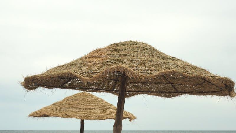 Parasol e palmas, céu com nuvens conceito do curso imagem de stock royalty free