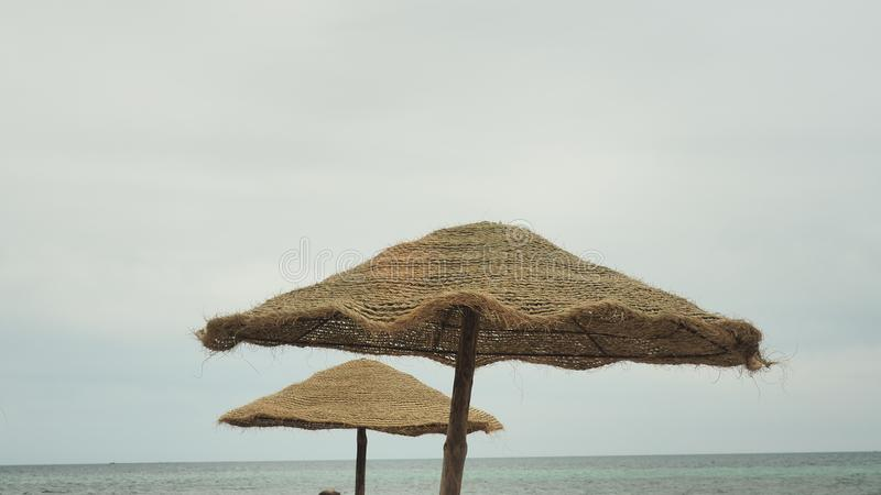 Parasol e palmas, céu com nuvens conceito do curso imagem de stock