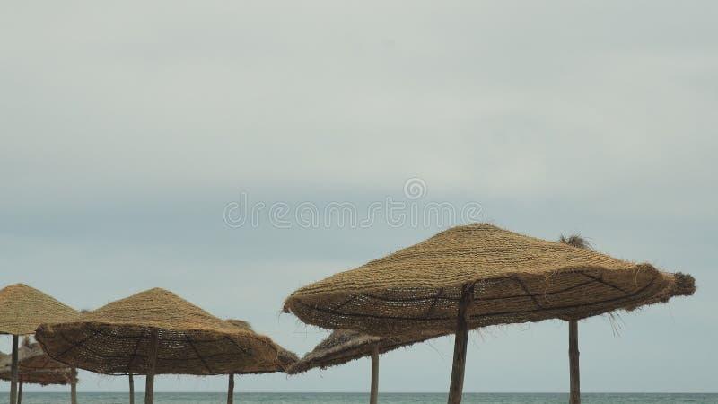 Parasol e palmas, céu com nuvens conceito do curso foto de stock royalty free
