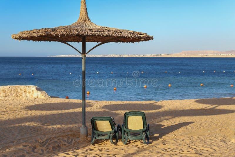 Parasol en sunbeds op het strand aan het rietoverzees stock afbeeldingen