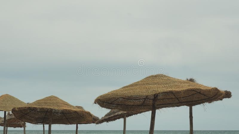 Parasol and palms, sky with clouds. travel concept royalty free stock photo