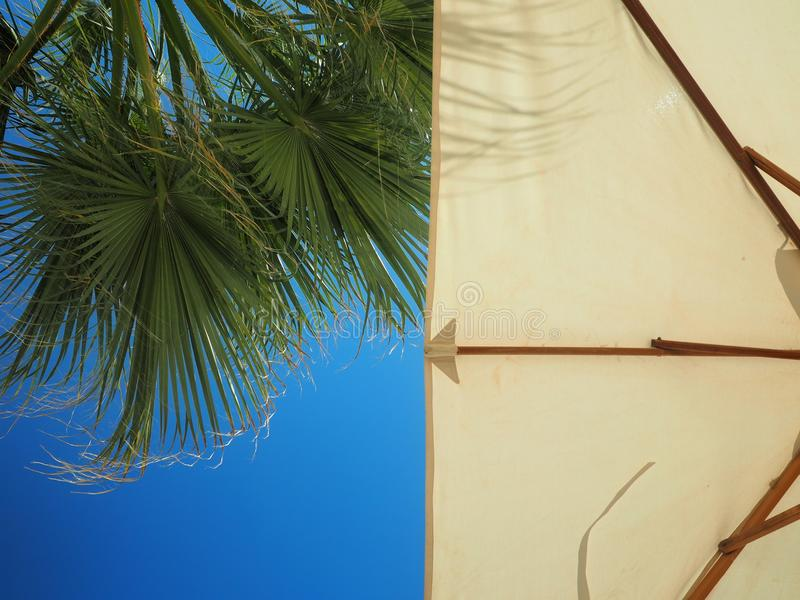 Parasol and palms, sky with clouds. travel concept stock images