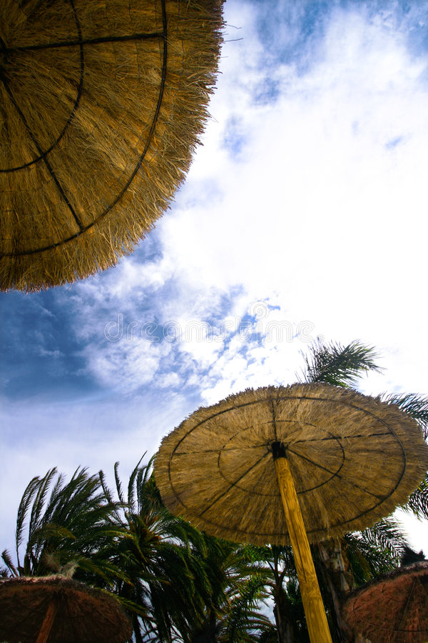 parasol słońce obraz royalty free