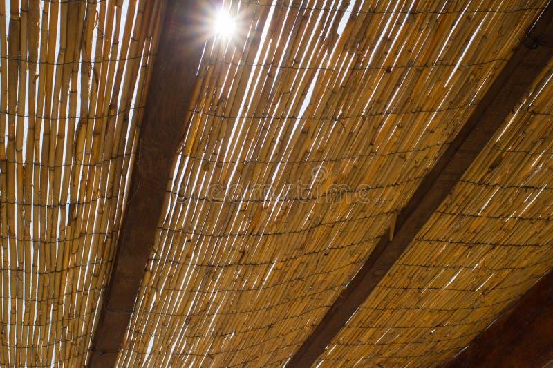 Parasol van palmbladenmening van onderaan met zon die door het glanzen royalty-vrije stock afbeeldingen