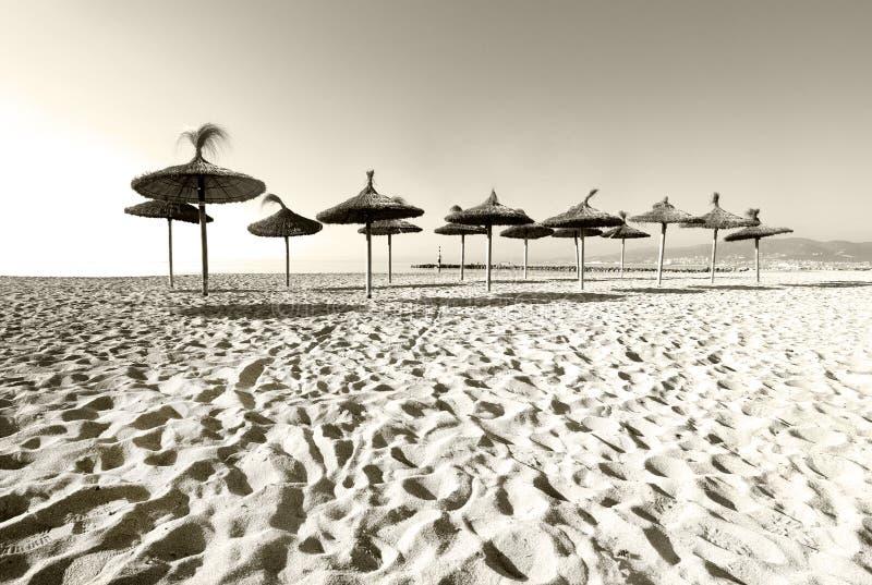 Parasoli della paglia sulla spiaggia sabbiosa immagini stock libere da diritti