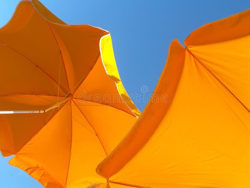 Parasoli gialli immagine stock