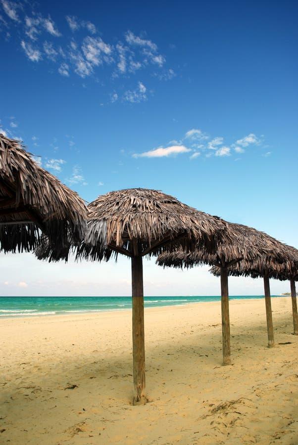 Parasoli su una spiaggia immagine stock