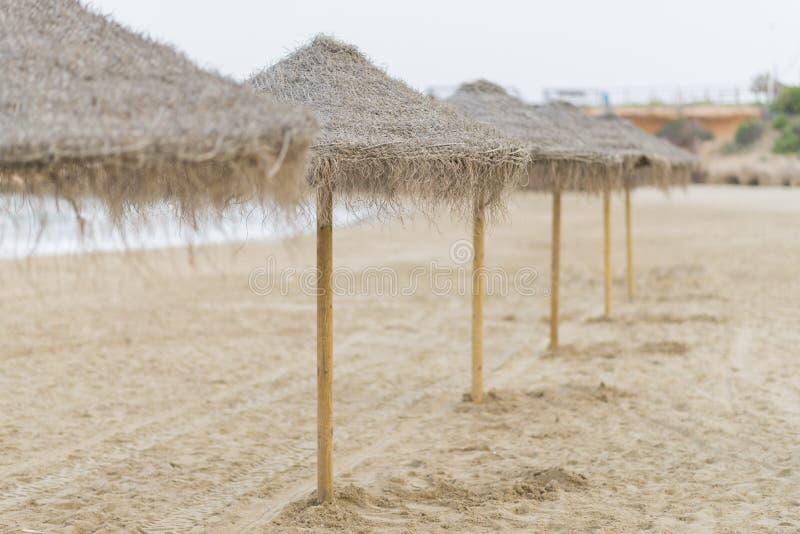 parasols royalty-vrije stock foto