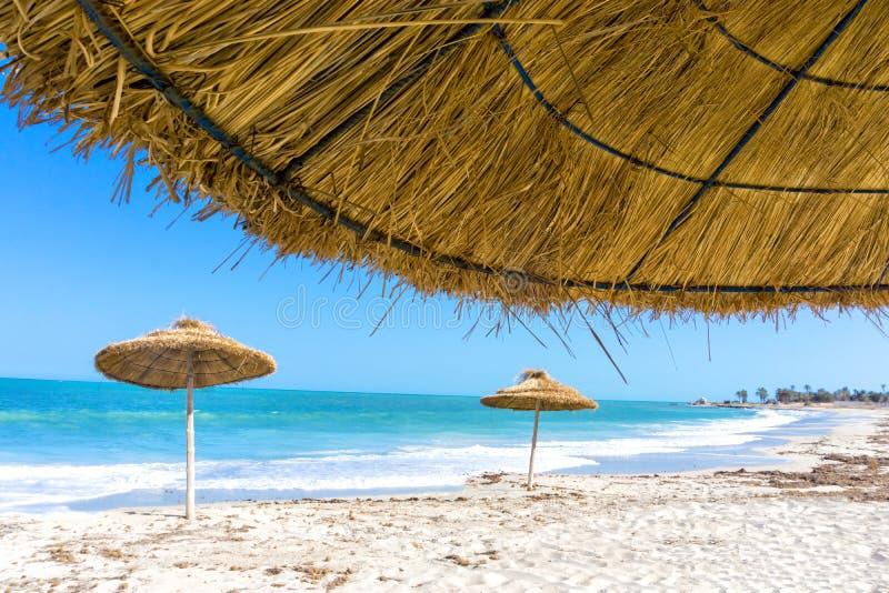 Parasols on the Beach of Djerba in Tunisia. Landscape of parasols on the beach of Djerba in Tunisia royalty free stock image