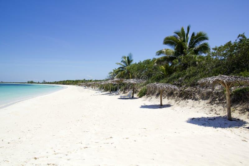 Parasols en sunbeds op een Caraïbisch strand.   stock foto