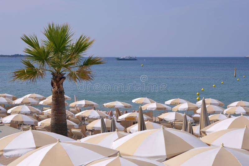 Parasols przy Cannes w Francja obraz stock
