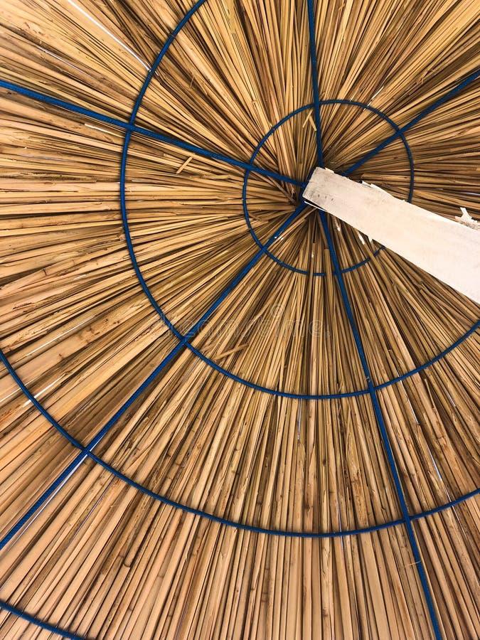 parasols photos libres de droits